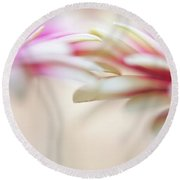 Round Beach Towel featuring the photograph Soft Touch. Macro Gerbera by Jenny Rainbow