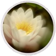 Round Beach Towel featuring the photograph Soft Water Lily by Richard Cummings