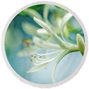 Soft White Round Beach Towel