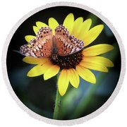 Round Beach Towel featuring the photograph Softness In Nature by Elaine Malott