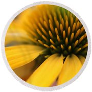 Solar Flare Round Beach Towel by Connie Handscomb