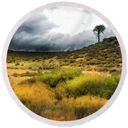 Round Beach Towel featuring the photograph Solitary Pine by Frank Wilson