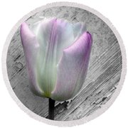 Solitary Pink Whisper Tulip Round Beach Towel