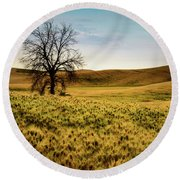 Solitary Tree Round Beach Towel