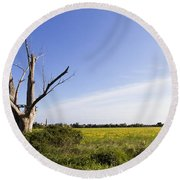 Round Beach Towel featuring the photograph Solitary Tree by Helga Novelli