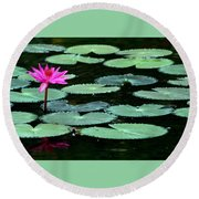 Round Beach Towel featuring the photograph Solitary Water Lily by Laurel Talabere