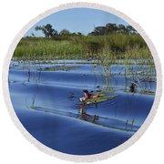 Solitude In The Okavango Round Beach Towel