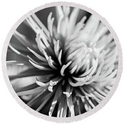 Solitute Round Beach Towel