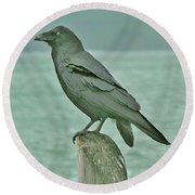 Something To Crow About Round Beach Towel
