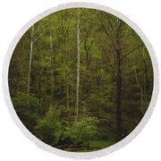 Round Beach Towel featuring the photograph Somewhere In The Woods by Shane Holsclaw