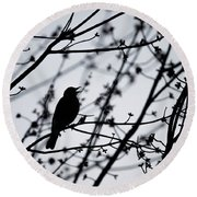 Round Beach Towel featuring the photograph Song Bird Silhouette by Terry DeLuco