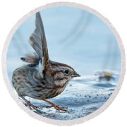 Song Sparrow 3426-112217-1cr Round Beach Towel
