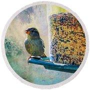Songbird Round Beach Towel