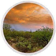Round Beach Towel featuring the photograph Sonoran Desert H11 by Mark Myhaver