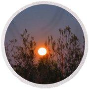 Sonoran Desert Harvest Moon Round Beach Towel