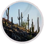 Sonoran Desert Saguaro Slope Round Beach Towel