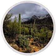Sonoran Winter No.1 Round Beach Towel