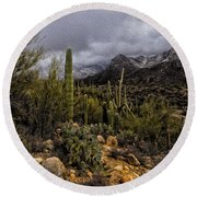 Sonoran Winter No.3 Round Beach Towel