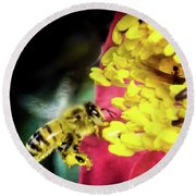 Round Beach Towel featuring the photograph Soul Of Life by Karen Wiles