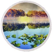 Round Beach Towel featuring the photograph Southern Beauty by Debra and Dave Vanderlaan