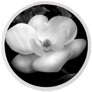 Southern Magnolia Passion Round Beach Towel