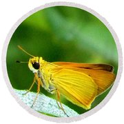 Round Beach Towel featuring the photograph Southern Skipperling Butterfly 001  by Chris Mercer