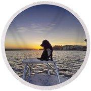 Spaniel At Sunset Round Beach Towel