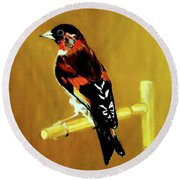 Spanish Gold Finch Round Beach Towel
