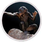 Spare Change? - Bonobo Round Beach Towel