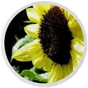 Sparkle Sunflower Round Beach Towel
