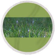Sparkling Dew Drops Round Beach Towel