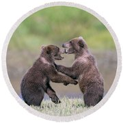 Sparring Cubs Round Beach Towel