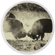 Sparring Partners - American Bison Round Beach Towel