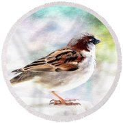 Sparrow Beauty 0004. Round Beach Towel by Kevin Chippindall