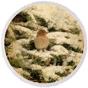 Round Beach Towel featuring the photograph Sparrow In Winter II - Textured by Angie Tirado