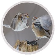 Round Beach Towel featuring the photograph Sparrows Fight by Mircea Costina Photography