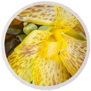 Round Beach Towel featuring the photograph Speckled Canna by Christi Kraft
