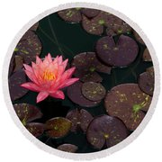 Speckled Red Lily And Pads Round Beach Towel