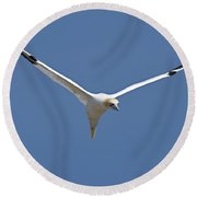Speed Adjustment Round Beach Towel by Tony Beck