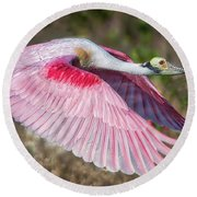 Spoonbill Winging It Round Beach Towel