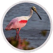 Round Beach Towel featuring the photograph Spoonbill Fishing by Norman Peay
