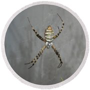 Spider Round Beach Towel