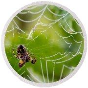 Spider And Spider Web With Dew Drops 05 Round Beach Towel