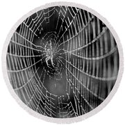 Spider In A Dew Covered Web - Black And White Round Beach Towel