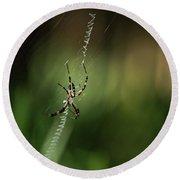 Spider In The Woods Round Beach Towel