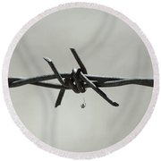 Spider On Barbed Wire In Black And White Round Beach Towel