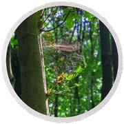 Spider Web In A Forest Round Beach Towel