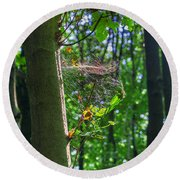 Spider Web In A Forest Round Beach Towel