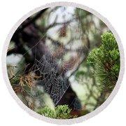 Spider Web In Tree Round Beach Towel