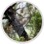 Spider Web In Tree Round Beach Towel